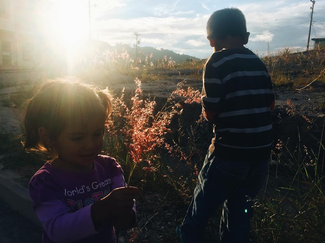 sunshine, flowers, & kiddos